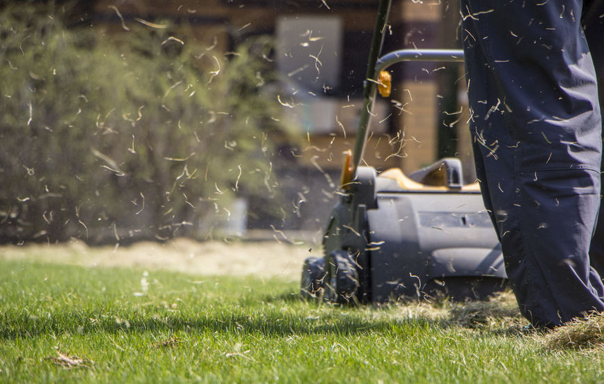 http://eazydoesitcleaning.com/wp-content/uploads/2019/03/Lawn-Aeration.jpg